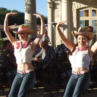 Country Hoe Down      Our Dancers perform quick and fun Line dances to all your country favourites! Intricate footwork and quick shuffles are always fun to watch! Our entertainers can lead your guest through some Country Line Dancing!