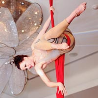 Aerial Artists  Our talented team of silks, hoop and straps performers will dazzle guests from above! Available for ambience  performance or fully c horeographed routines!